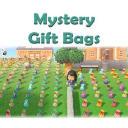 Mystery Gift Bags